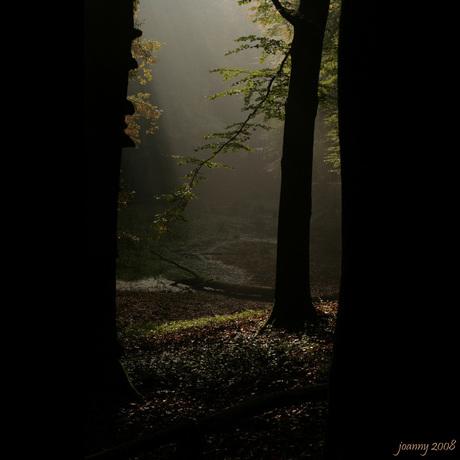 lichtspel-1