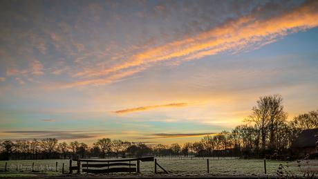 Goedemorgen 10 januari