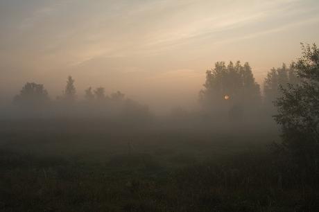 Vroege uurtjes in de Biesbosch