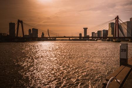 Rotterdam Skyline - Rotterdam Skyline - foto door RenegadeFotografie op 03-03-2021 - deze foto bevat: zon, water, rotterdam, erasmusbrug, brug, .licht, .skyline