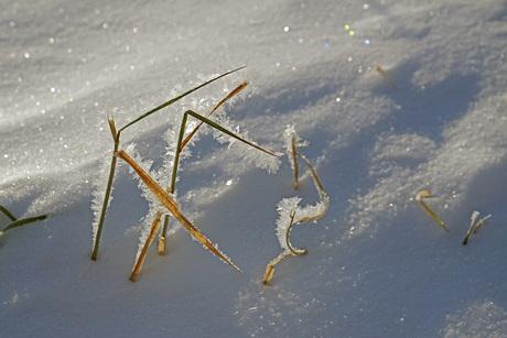 ijsflinters.