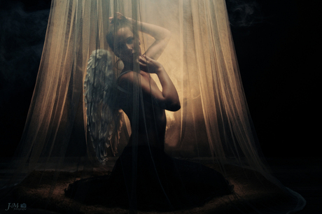Angel in a mosquito net