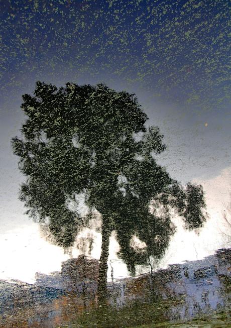waterboom