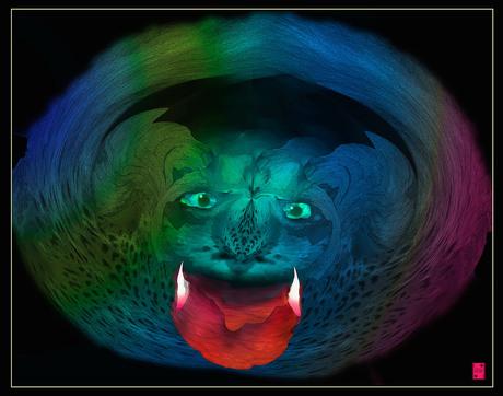 regenboogkat