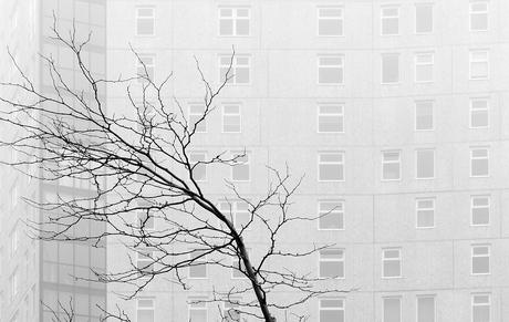Mist in Eindhoven
