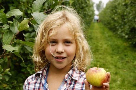 In de appelgaard.