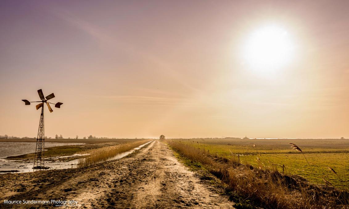 Follow the path - Genomen in het natuurgebied tussen Spijkenisse en Hellevoetsluis. - foto door mauricesundermann op 30-04-2014 - deze foto bevat: lucht, wolken, zon, water, spijkenisse, licht, avond, zonsondergang, landschap, tegenlicht, molen, hellevoetsluis