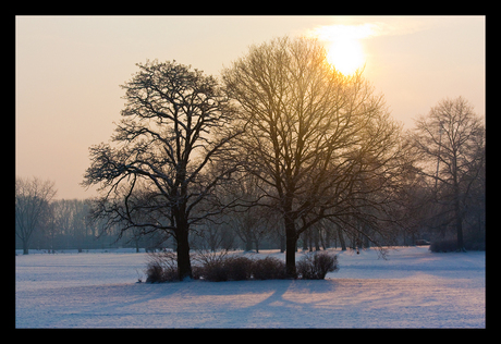 Winter Goffert park Nijmegen