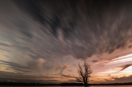 Zonsondergang in De Biesbosch.
