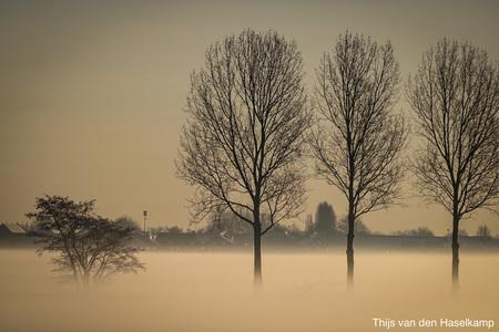 A540D2FA-83F4-41C0-9DF1-A99213E2EFB0 - Een mooie zonsopgang in de polder - foto door Thijs1030 op 05-03-2021 - deze foto bevat: mist