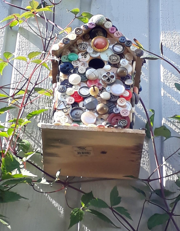 20190912_133231 - Volgend voorjaar wachten de vogels, die dat willen, een aan elkaar geknoopt kleurig nestje. - foto door pagrach op 12-09-2019 - deze foto bevat: nestje