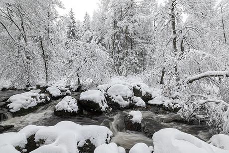 Heerlijke winterdagen