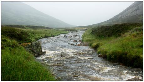 Beekje in Schotland