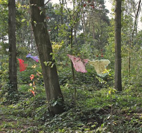 van bewoners in het bos