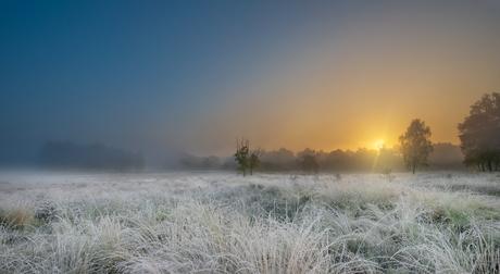 Mist in Hoogerheide ...