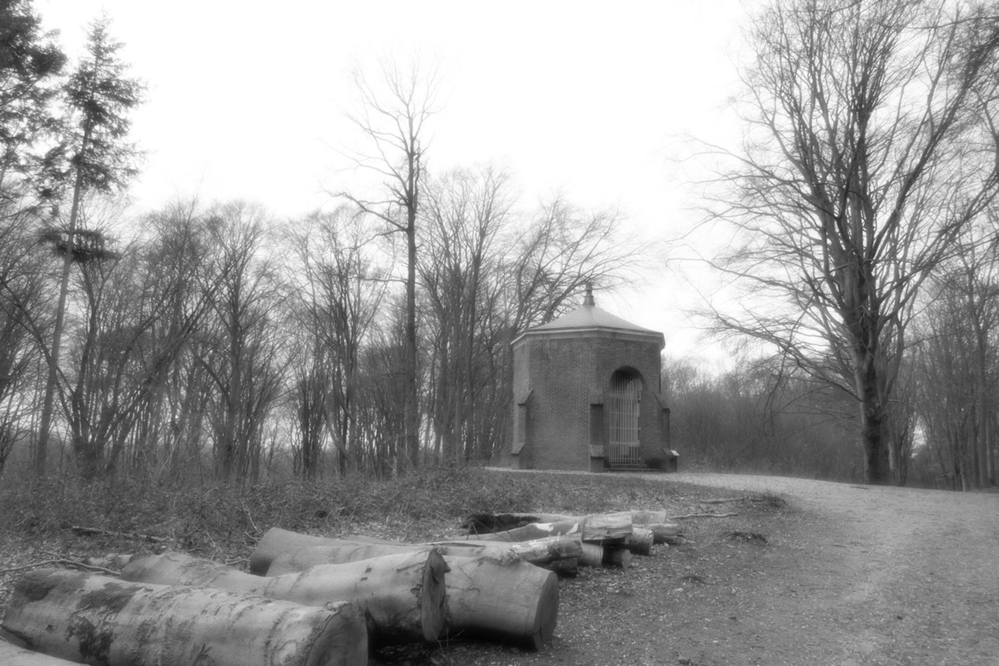 Zwart/wit - - - foto door MANL op 26-03-2021