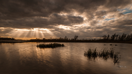 Prachtig zonsondergang in de Biesbosch.