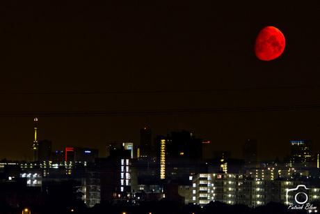Maan ondergang