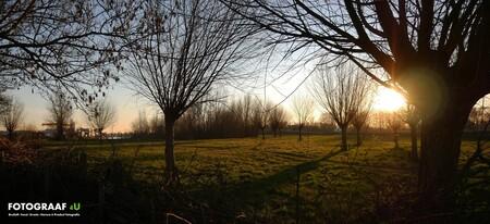 Bomen-Bos-Doorkijk-Natuur-Ondergaande Zon - Bomen-Bos-Doorkijk-Natuur-Ondergaande Zon - foto door Fotograaf4U op 14-02-2019 - deze foto bevat: zon, sunset, natuur, zonsondergang, landschap, bos, doorkijkje, bomen, ondergaande zon