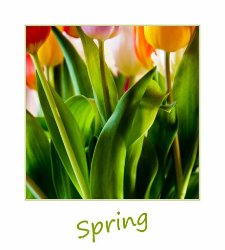 Een beetje lente