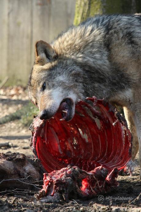 Smakelijk eten!