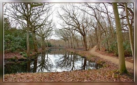 Landschap Domburg