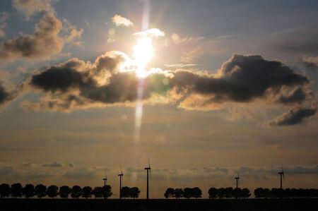 Zonsondergang vanuit het bos - Probeerfoto met tegenlicht. Zonsondergang met windmolens vanuit het bos. - foto door mickie op 11-08-2009 - deze foto bevat: zon, zonsondergang, windolen