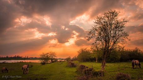 zonsondergang aan de rijn
