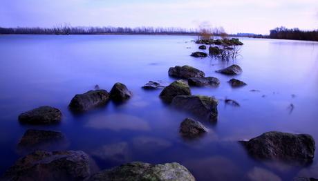 Zwevende stenen in de Biesbosch