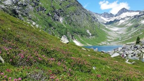 De prachtige natuur rondom de Gross Glockner