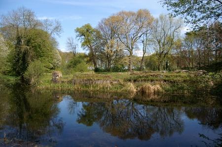 Kasteel Hemmen - Kasteelterrein met de ruïnes van het Huis te Hemmen. - foto door PetervdWielen op 28-03-2016 - deze foto bevat: water, natuur, kasteel, spiegeling, landschap, bomen