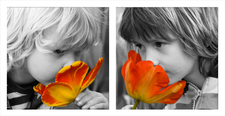 bloemetjes ruiken