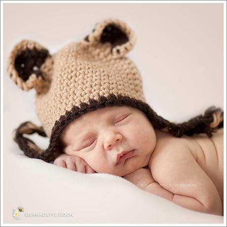 Little baby bear, close-up