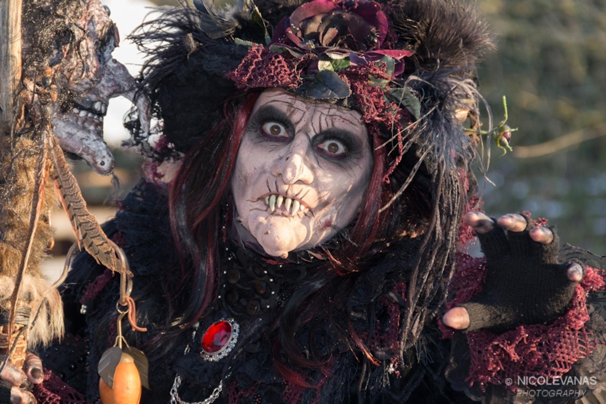 Lovely Witch - Afgelopen weekeinde was de Magische Midwinterfair in Archeon in Alphen aan den Rijn.  Een lange fantastische dag op de zaterdag, een witte sneeuwde - foto door nicole-8 op 10-12-2012 - deze foto bevat: mensen, heks, magie, archeon, verkleden, midwinterfair