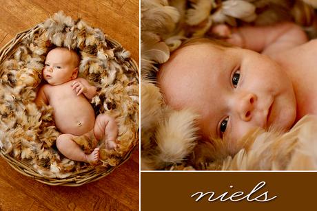 Baby Niels