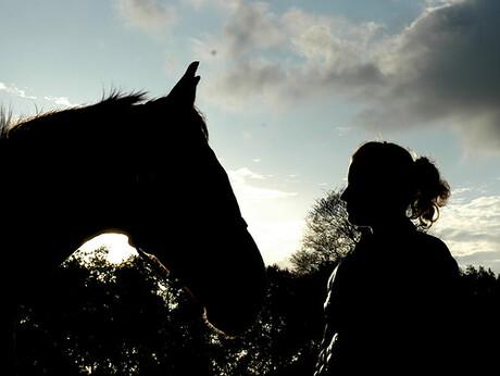 Beethoven (paard) en Suzanne
