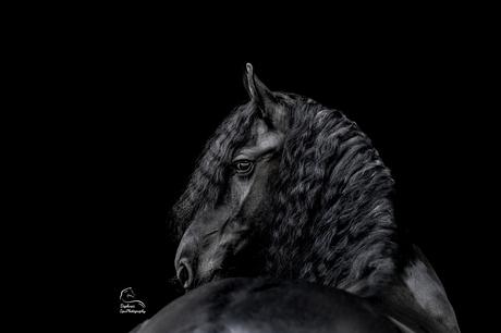 Jitske, zwarte parel