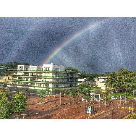 Rainbow in Rotterdam
