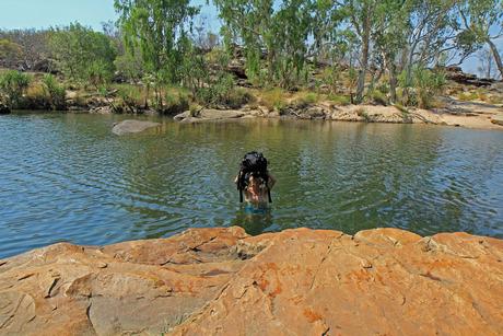 Wandelen Outback Australie