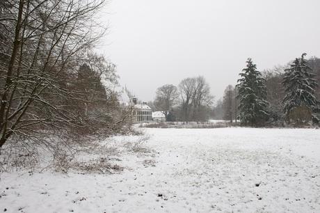 Foggy winterday