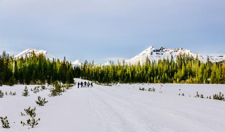 Walking in winter wonderland!