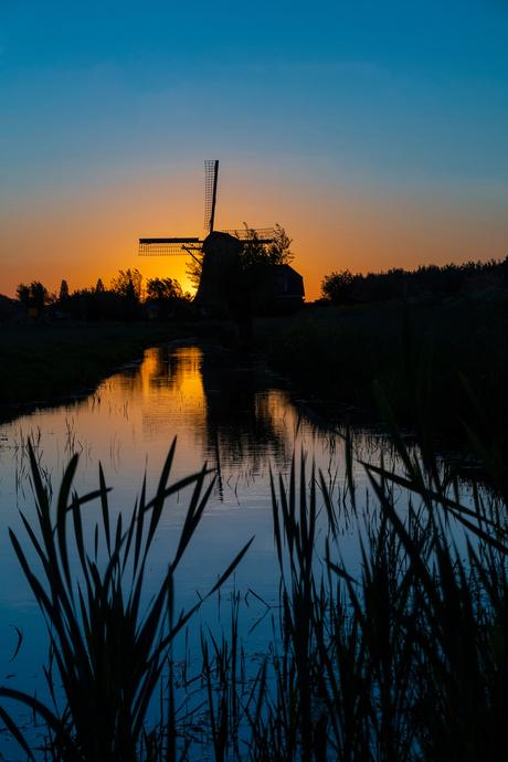 Lekker Hollands!