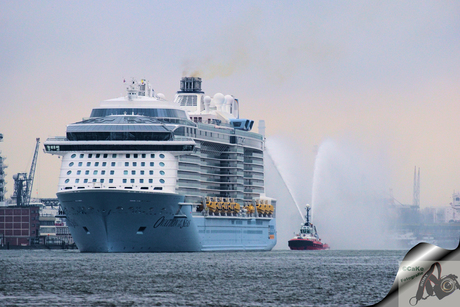 welkom Ovation of the seas