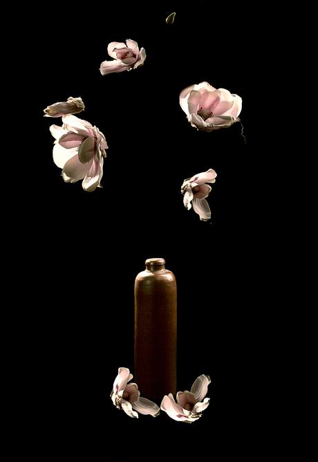 Flying-flowers