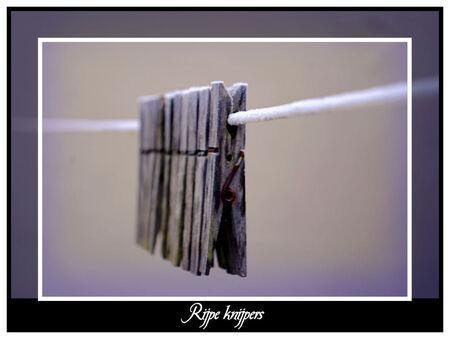 Rijpe Knijpers - Mijn eerste winterse foto van dit jaar. - foto door spitsoor op 16-12-2009 - deze foto bevat: rijp, winter, knijper