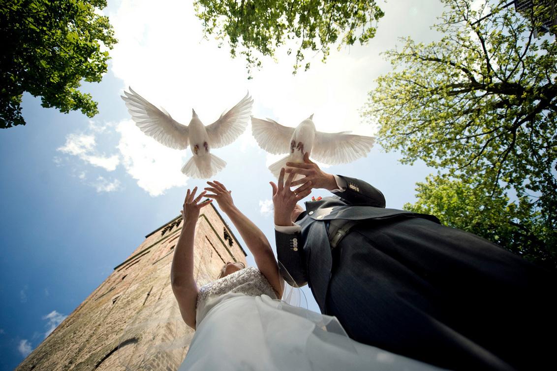Het begin. - Hallo!!! Zo sporadisch plaats ik nog eens een foto op ZOOM, blijft leuk! Ik heb onlangs mijn derde bruiloft gefotografeerd, met duiven dit keer! Gew - foto door mycreativity op 19-08-2012 - deze foto bevat: kleur, wit, zon, duiven, licht, vliegen, zomer, nikon, zonlicht, compositie, fel, kleurrijk, huwelijk, bruid, bruiloft, bruidspaar, trouwerij, contrast, danielle, scherpte, geluk, bruidegom, onderaf, olst, d700, van eerden, gewoondanielle.nl, witte duiven, info@gewoondanielle.nl, Nikkor 24-70 2.8, groohoek