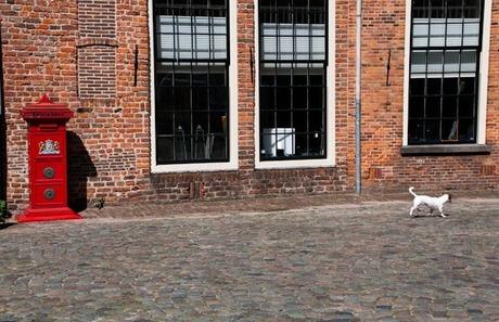 Mooie dag in Deventer