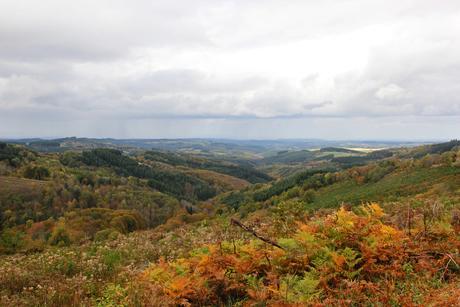 Herfst in Frankrijk