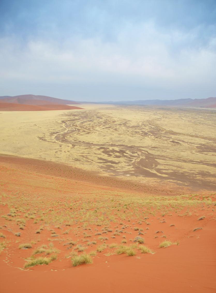 Dune 45 - Uitzich vanaf Dune 45, zo genoemd omdat hij op 45km van Sesriem richting Sossusvlei ligt. 's Ochtends vroeg het duin beklommen voor de zonsopkomst, m - foto door Blackscorpion op 28-03-2013 - deze foto bevat: duinen, zand, afrika, namibie, woestijn, droog