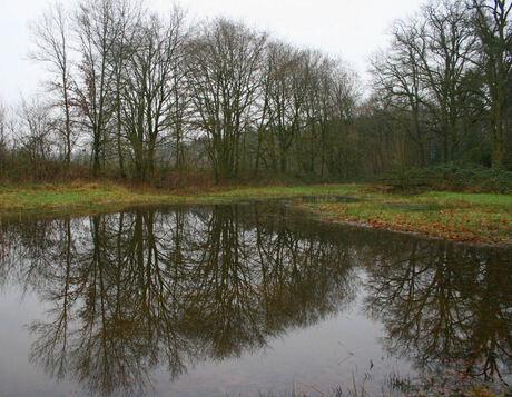 Landgoed Smalenbroek